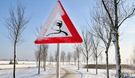 Strøsingel til vinteren?