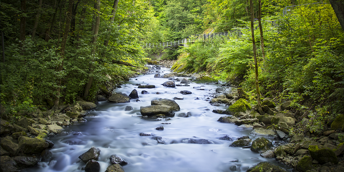 Franzefoss bidrar til at Alna-elva skal bli ren